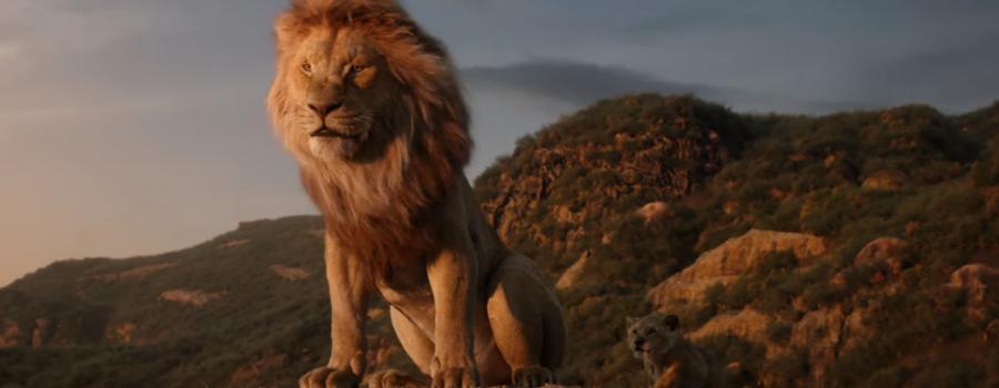 """Que lindas! Divulgadas fotos inéditas do live-action de """"O Rei Leão""""; vem ver!"""