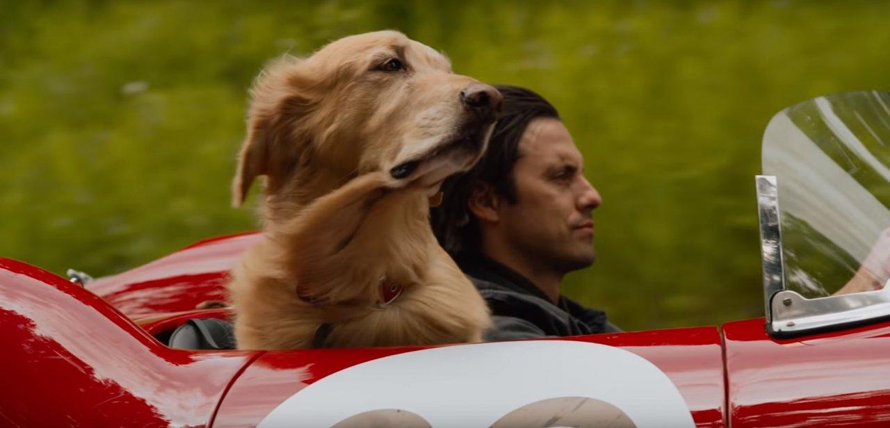Milo Ventimiglia e um inteligente cachorro estão prontos pra te emocionar no trailer da adaptação de 'A arte de correr na chuva'; vem ver!>