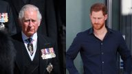 Principe Charles Harry