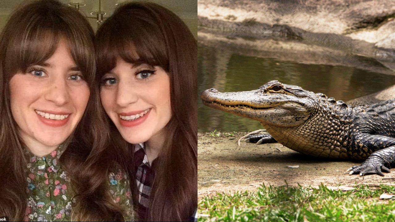 Gemeas Crocodilo