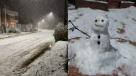 Sul do Brasil tem registro de neve em 13 cidades, e rende memes na web. (Reprodução/Twitter)