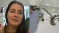 Mulher compra pingente para guardar cinzas da avó e encontra restos mortais de estranho no objeto. (Reprodução; CBC/Twitter)
